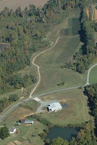 Estate Vineyards near Greensboro